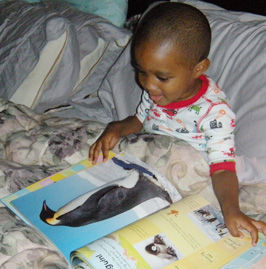 Reading Stories and Singing Songs